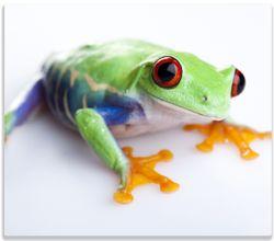 Herdabdeckplatte Lustiger Frosch in grün und orange – Bild 1
