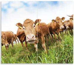 Herdabdeckplatte Kühe im Sommer auf der Weide – Bild 1