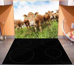 Herdabdeckplatte Kühe im Sommer auf der Weide – Bild 3