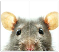Herdabdeckplatte Maus am Tellerrand – Bild 1