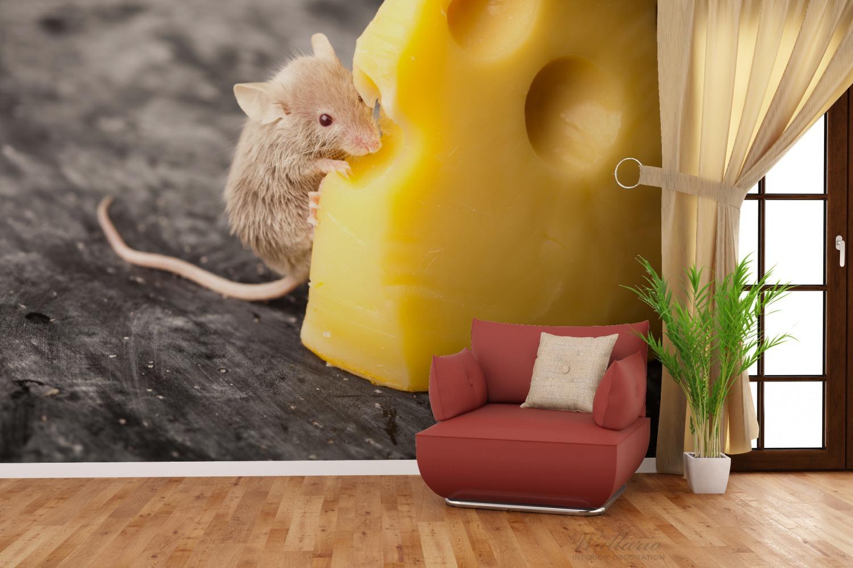 vliestapete s e maus knabbert an einem k se in der k che. Black Bedroom Furniture Sets. Home Design Ideas