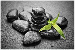 Vliestapete Bambustrieb auf schwarzen Steinen, benetzt mit Wasser-Tropfen – Bild 1