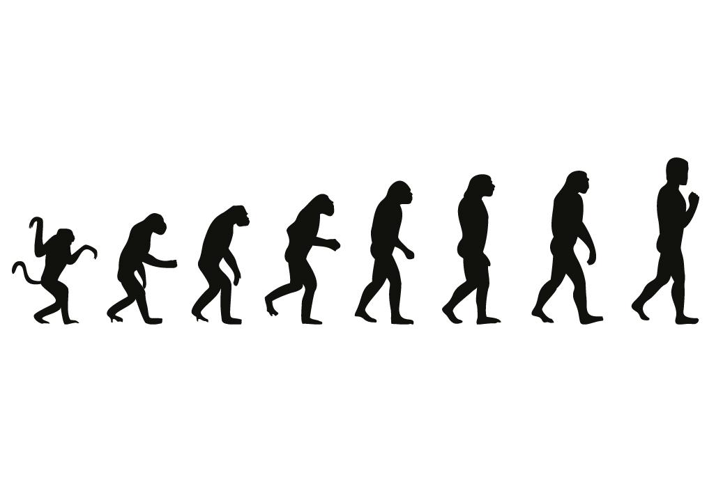 Vliestapete Evolution - Die Entwicklung des Menschen – Bild 1