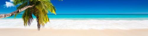 Küchenrückwand Südseestrand in der Karibik mit Palme