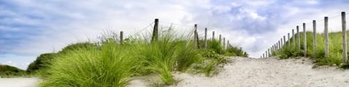 Küchenrückwand Auf dem Weg zum Strand durch Dünen