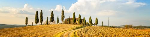 Küchenrückwand Italien - Toskana unter blauem Himmel  einsame Farm