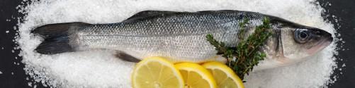 Küchenrückwand Fischmenü - Frischer Fisch auf Salz mit Zitronen
