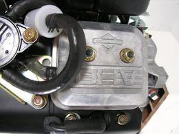 16 PS Briggs & Stratton Motor Vanguard 2-Zyl. OHV 25,4/80