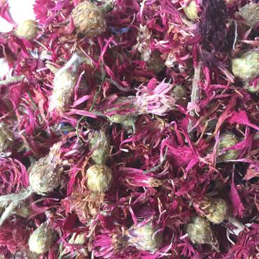 Kornblumen Rot – Bild 1