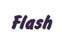 Namenszug Schrift FLASH, 25 mm (bis 21 Buchstaben)
