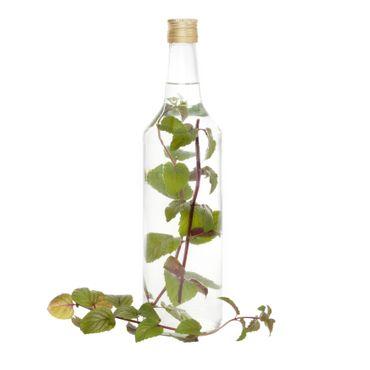 20er Set Van Well Flasche Venezia 1L – Bild 2