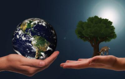 links Weltkugel in einer Hand rechts Baum in einer Hand
