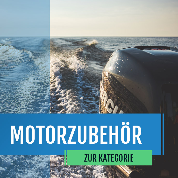 Motor, Steuerung