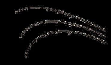 Waller Set Spinnfischen -Zeck Spinrute 270cm + Fox Rolle + Zeck Schnur – Bild 6