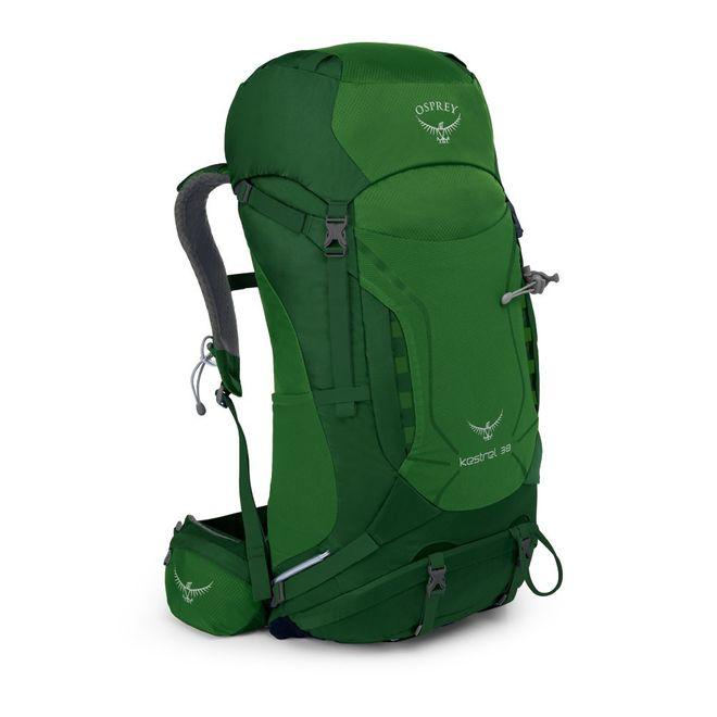 Osprey Wanderrucksack Kestrel 38 - Jungle Green