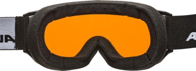 Alpina Challenge 2.0 DH Skibrille - black transparent – Bild 2