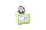 Alda PQ-Premium, Beamerlampe / Ersatzlampe für SANYO PLC-XU100 Projektoren, Lampe mit Gehäuse