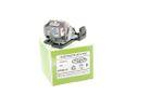 Alda PQ-Premium, Beamerlampe / Ersatzlampe für OPTOMA DS31 Projektoren, Lampe mit Gehäuse