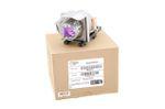 Alda PQ Original, Beamerlampe für OPTOMA X307USTi Projektoren, Markenlampe mit PRO-G6s Gehäuse