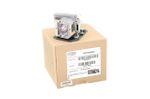 Alda PQ Original, Beamerlampe für OPTOMA EW762 Projektoren, Markenlampe mit PRO-G6s Gehäuse