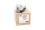 Alda PQ Referenz, Lampe für SANYO PDG-DSU21 Projektoren, Beamerlampe mit Gehäuse