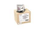 Alda PQ Original, Beamerlampe für OPTOMA HD67N Projektoren, Markenlampe mit PRO-G6s Gehäuse