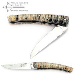 Arbalete G. David Thiers - Mammut Backenzahn - verzierte Platine - 12 cm Taschenmesser – Bild 2