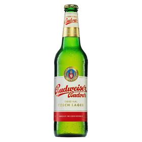 Budweiser Budvar Original Czech Lager 20x0,50L