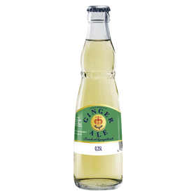 Margon Ginger Ale 20x0,25L