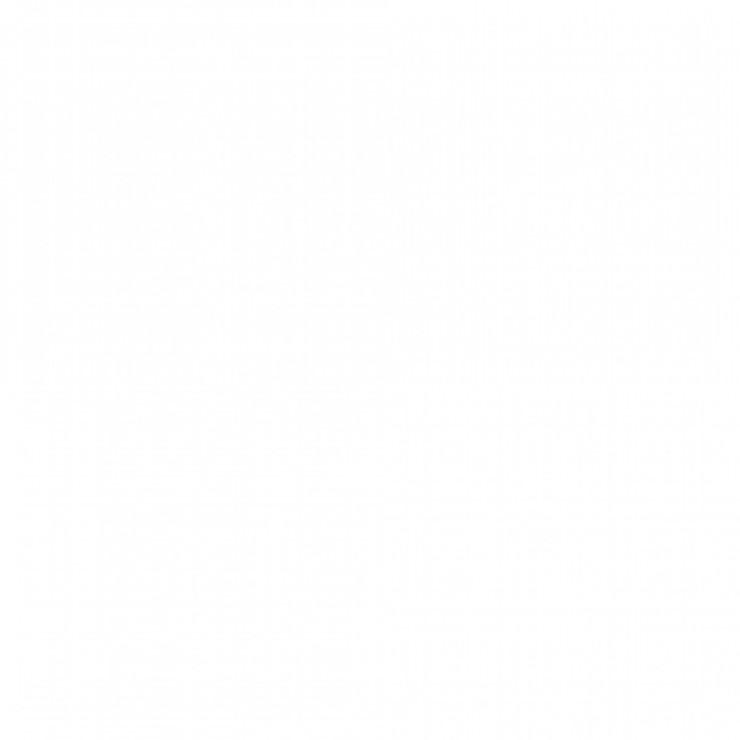 Wilckens Wetterschutz-Farbe Seidenglanz Bild 2