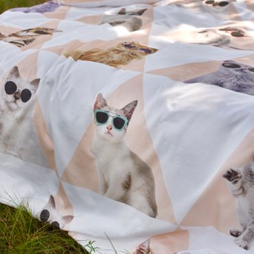Covers & Co Bettwäsche Cool Cats Multi Renforcé – Bild 3