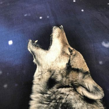 ESPiCO Bettwäsche Sleep and Dream Wolf Blau Renforcé – Bild 6