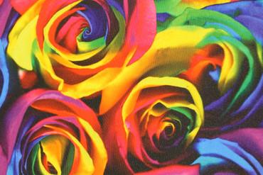 Bi-Stretch Pop-Art Rosen – Bild 4