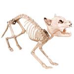 Figur Skelett Katze 001