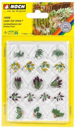 14058 Gartenpflanzen