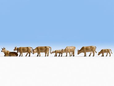 15722 Kühe, dunkelbraun