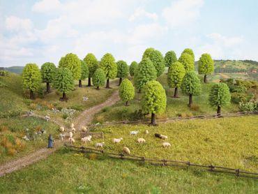 Noch 26801 Laubbäume