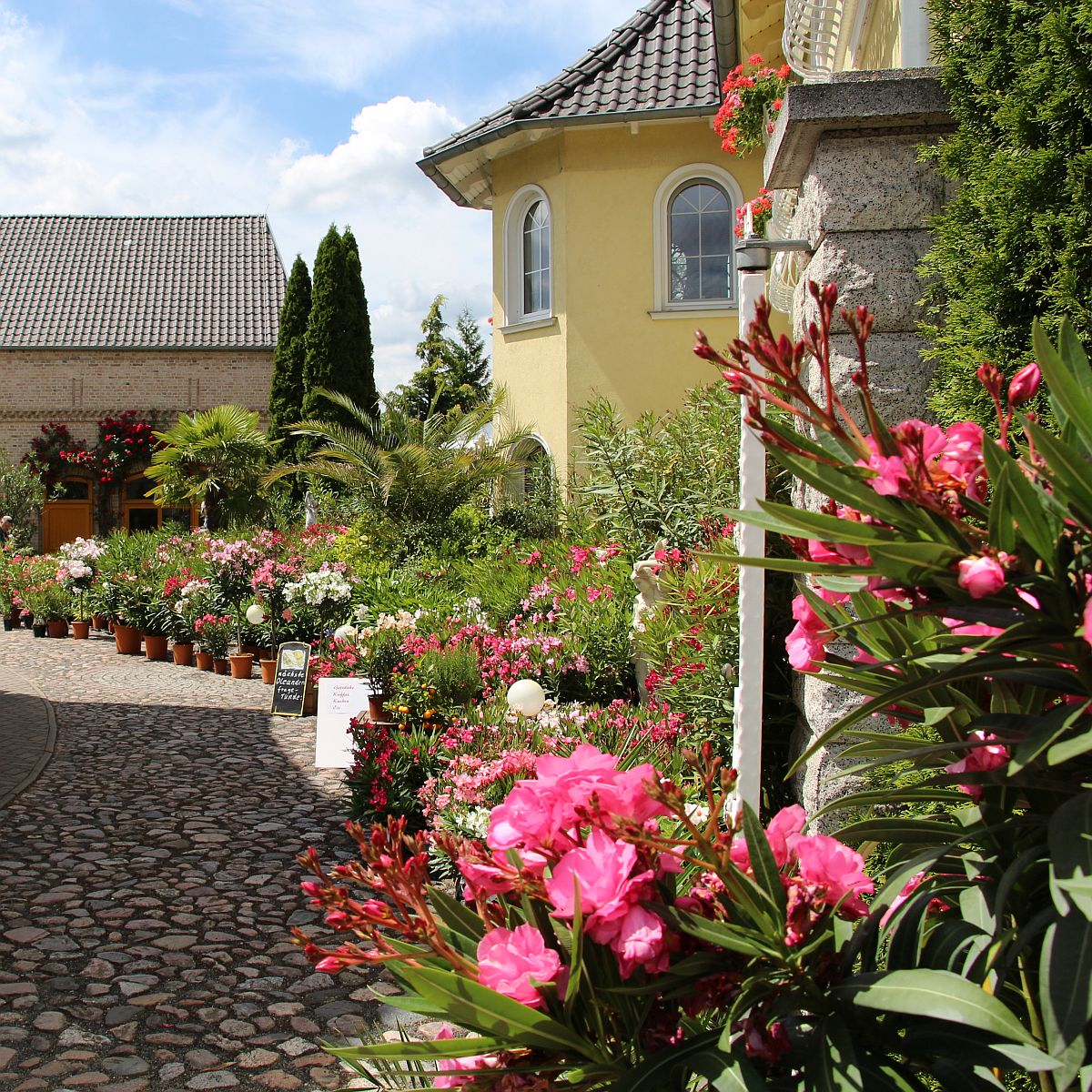 Unser Oleanderhof