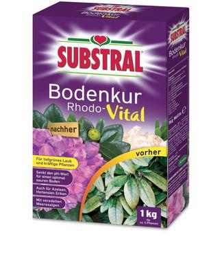 SCOTTS Substral® Bodenkur Rhodo-Vital, 1 kg