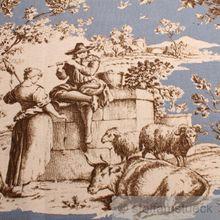 Baumwolle Rips Toile de Jouy Rosen himmelblau braun breit