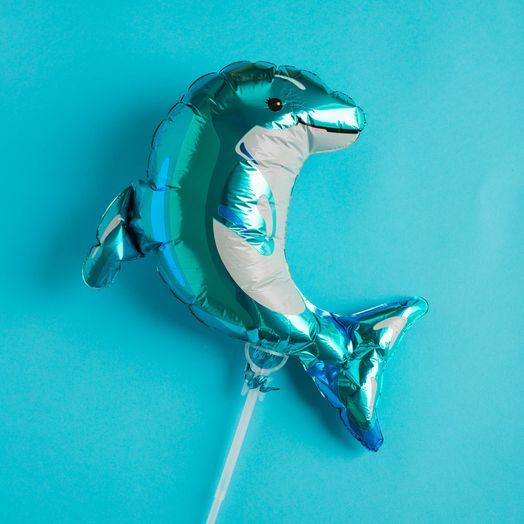 Mini Ballon Delphin