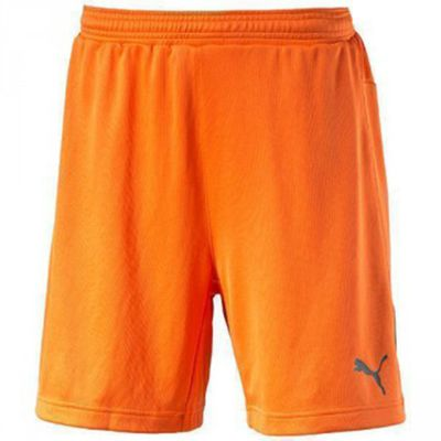 puma STADIUM Short Torwart