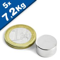Disc Magnet Ø 15 x  8mm Neodymium N42, Nickel - pull 7,2kg – 5 pieces