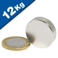 Disc Magnet Ø 25 x  7mm Neodymium N42, Nickel - pull 12kg