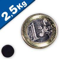 Round Disc Magnet Ø   8 x  5mm Neodymium N45 (Rare Earth), Epoxy - pull 2,5 kg