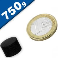 Scheibenmagnet Rundmagnet Ø 15 x 10mm Ferrit Y35 - hält 750g - Keramik-Magnet