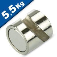 Deco magnet with hook Ø 12 mm neodymium nickel – pull 5,5 kg