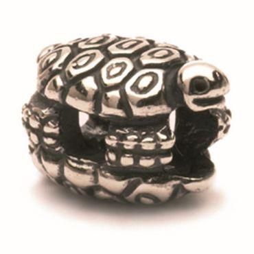 Silberperle: Schildkröten