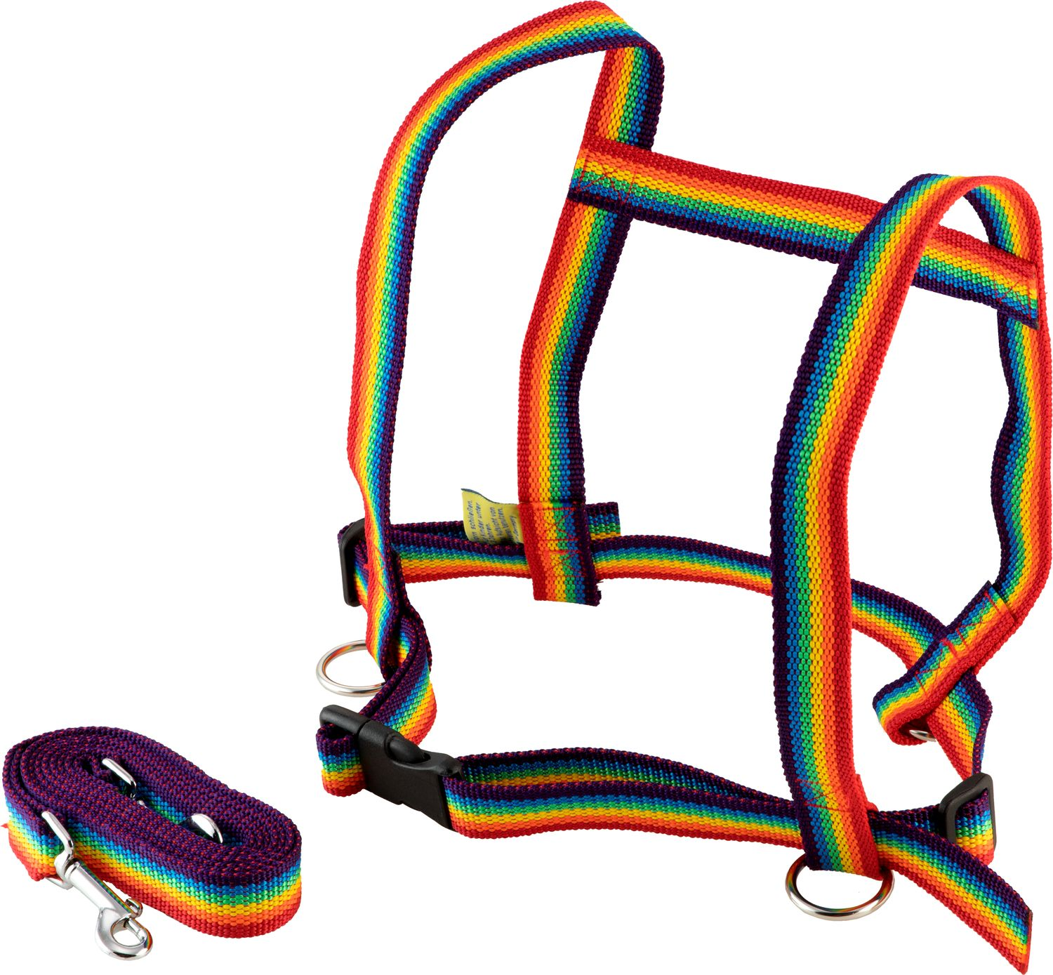 Horse Leash and Halter