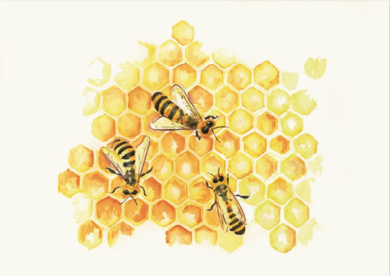 Postcard Bees